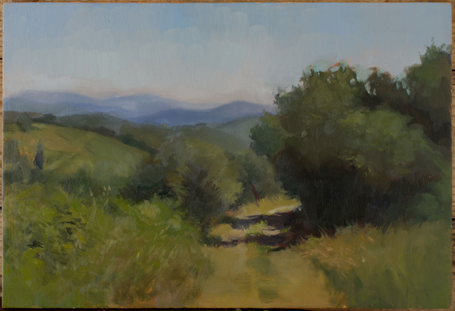 Pathway into tuscan hills - Sahra Becherer (Teacher)