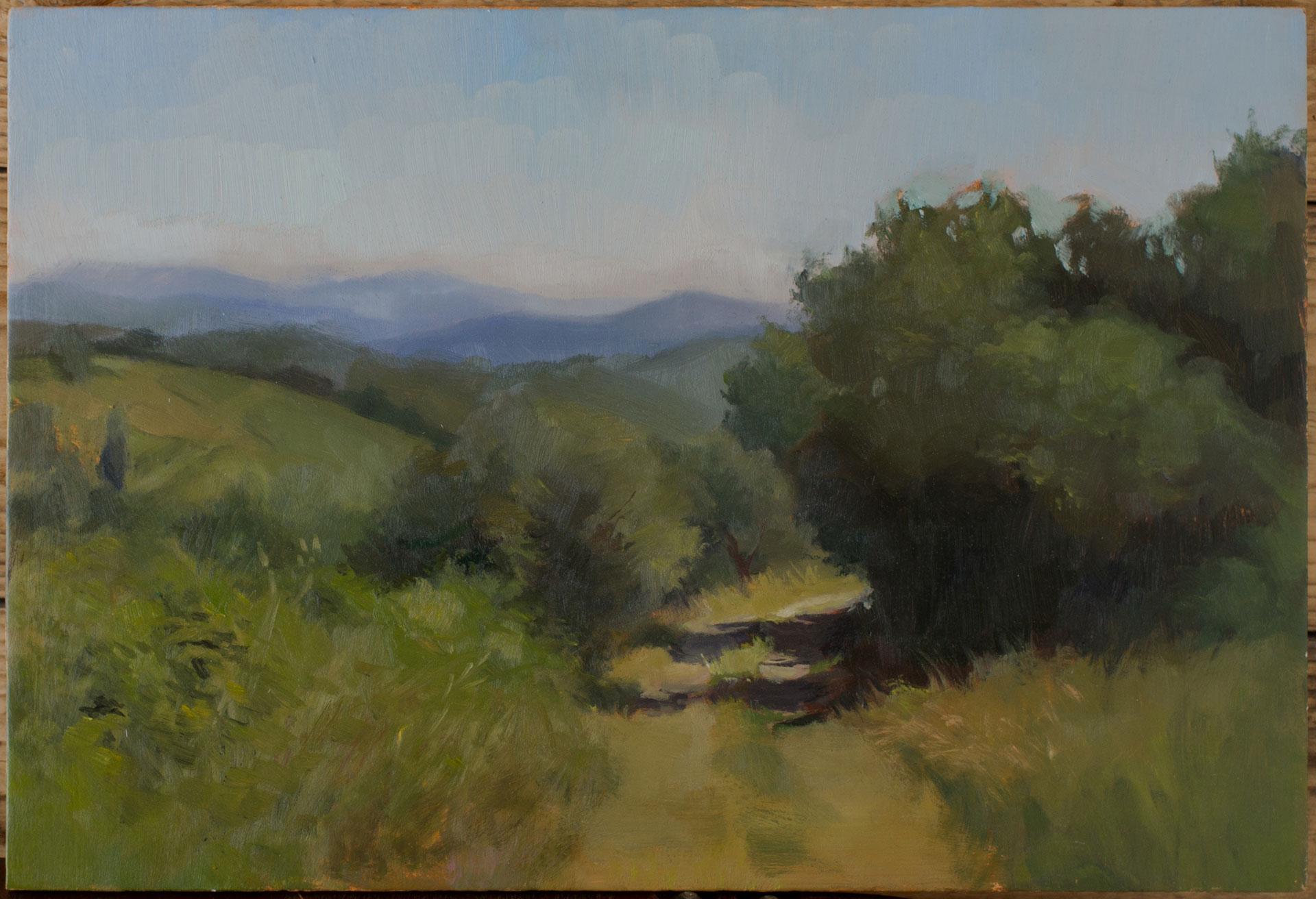 Pathway into tuscan hills - Sahra Becherer (Teacher)